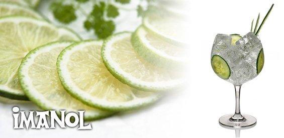 Gin Tonic Asador Imanol